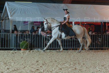 salon-du-cheval--hannut-747_26186429381_o