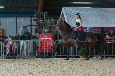 salon-du-cheval--hannut-750_25979715820_o