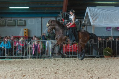salon-du-cheval--hannut-752_26252567805_o