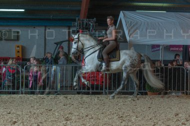 salon-du-cheval--hannut-754_25647793964_o