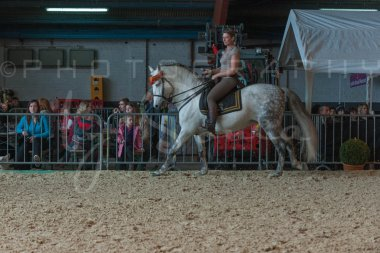 salon-du-cheval--hannut-755_26226775636_o