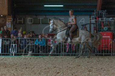 salon-du-cheval--hannut-757_26186294321_o