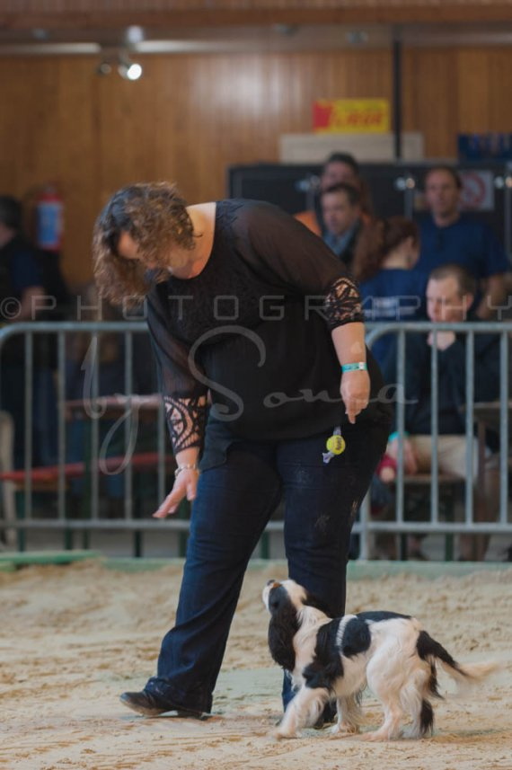 salon-du-cheval--hannut-75_26186484081_o