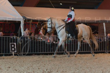 salon-du-cheval--hannut-766_26186427991_o