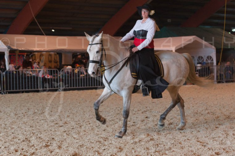 salon-du-cheval--hannut-775_25650023413_o