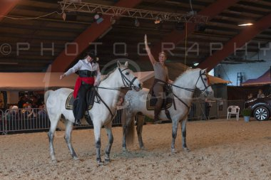 salon-du-cheval--hannut-778_26226642966_o
