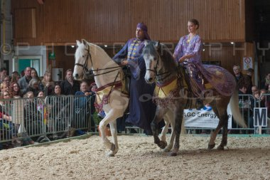 salon-du-cheval--hannut-784_26252698755_o