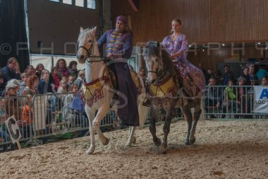 salon-du-cheval--hannut-787_25650021513_o