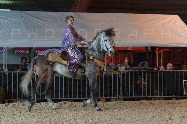 salon-du-cheval--hannut-806_25647919304_o