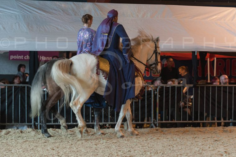 salon-du-cheval--hannut-815_26186423241_o