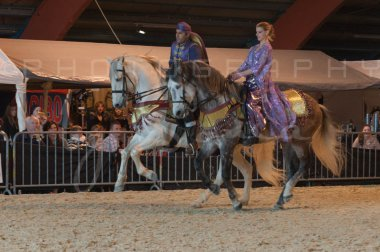 salon-du-cheval--hannut-830_26186422371_o