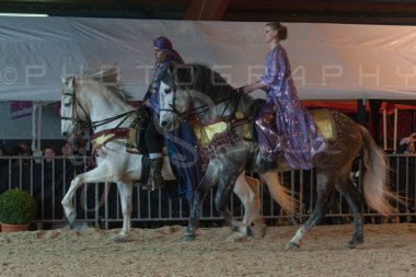 salon-du-cheval--hannut-843_26252692075_o