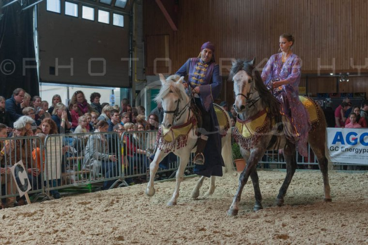 salon-du-cheval--hannut-845_25649890883_o