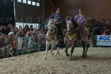 salon-du-cheval--hannut-846_25979839120_o