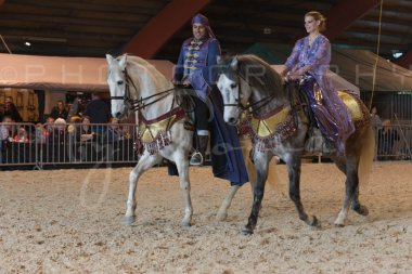 salon-du-cheval--hannut-849_26252566135_o