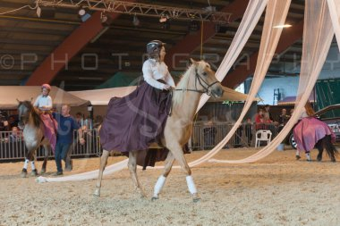 salon-du-cheval--hannut-871_25979835780_o