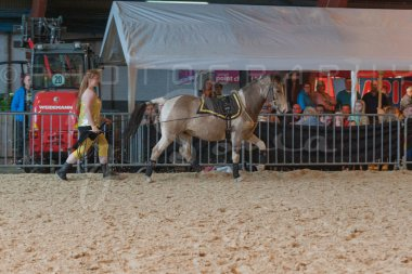 salon-du-cheval--hannut-886_26226640976_o