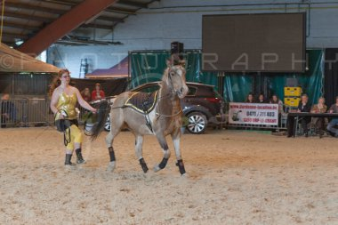 salon-du-cheval--hannut-890_25979833510_o