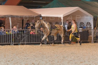 salon-du-cheval--hannut-899_25649889893_o