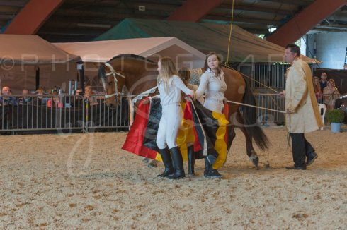 salon-du-cheval--hannut-921_25647790974_o