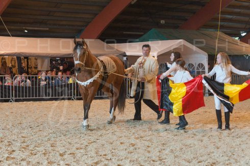 salon-du-cheval--hannut-922_26160247592_o