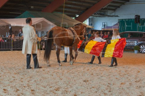 salon-du-cheval--hannut-924_26226757376_o