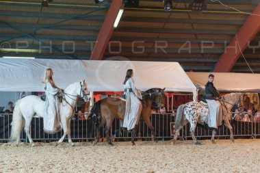 salon-du-cheval--hannut-933_25650004463_o