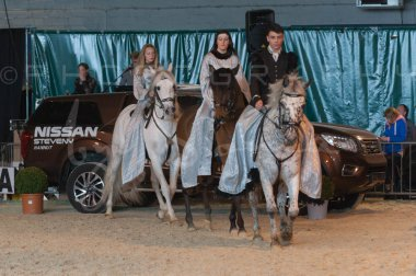 salon-du-cheval--hannut-934_26252680195_o