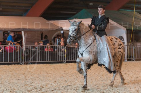 salon-du-cheval--hannut-938_25979712650_o