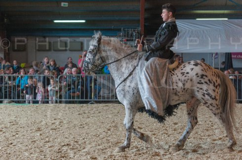 salon-du-cheval--hannut-939_26226754096_o