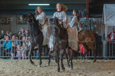 salon-du-cheval--hannut-943_26186406371_o