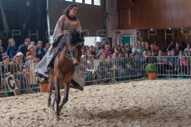 salon-du-cheval--hannut-944_26252678485_o