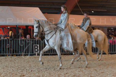 salon-du-cheval--hannut-947_26252678085_o