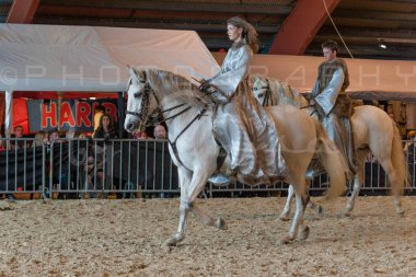 salon-du-cheval--hannut-948_26252677855_o