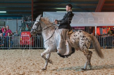 salon-du-cheval--hannut-951_25650001373_o
