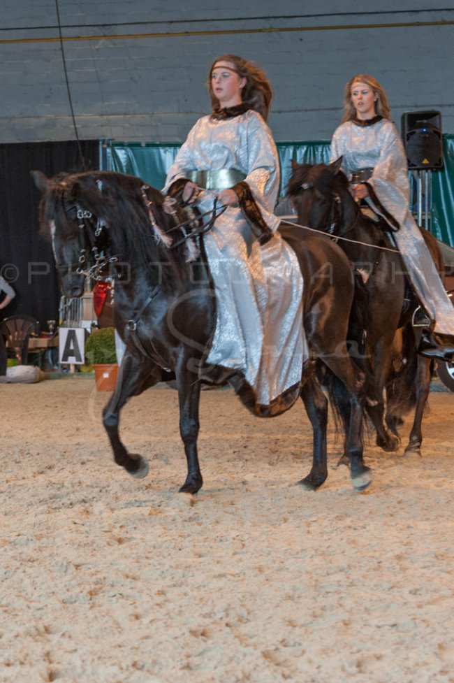 salon-du-cheval--hannut-952_25647900654_o