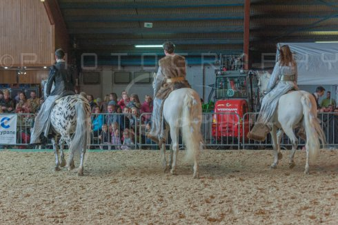 salon-du-cheval--hannut-955_26160241792_o