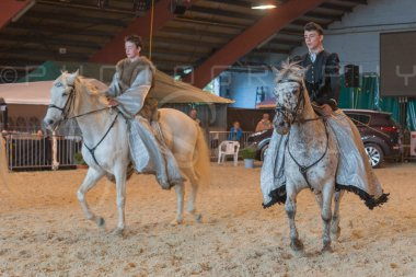 salon-du-cheval--hannut-958_25650000333_o