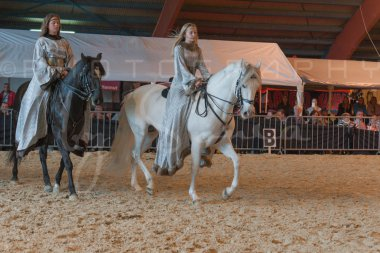 salon-du-cheval--hannut-959_25979824530_o