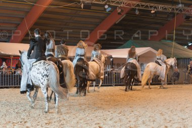 salon-du-cheval--hannut-960_26252676085_o