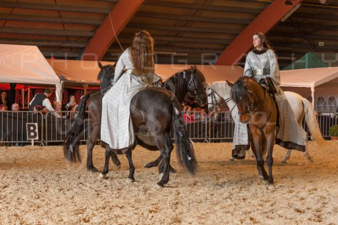 salon-du-cheval--hannut-965_26252675575_o
