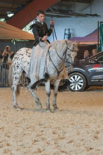 salon-du-cheval--hannut-974_25979822350_o