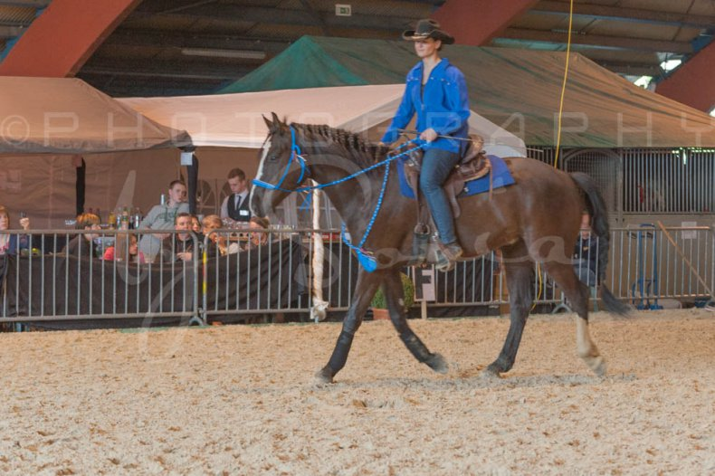 salon-du-cheval--hannut-977_25647897034_o