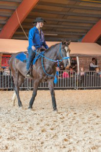 salon-du-cheval--hannut-980_26160238122_o