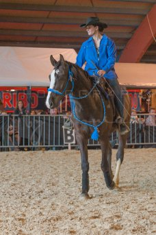salon-du-cheval--hannut-983_25979820350_o