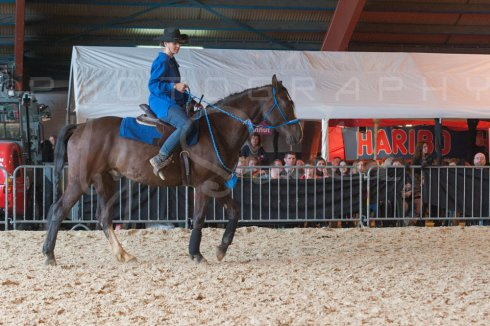 salon-du-cheval--hannut-993_25979819030_o
