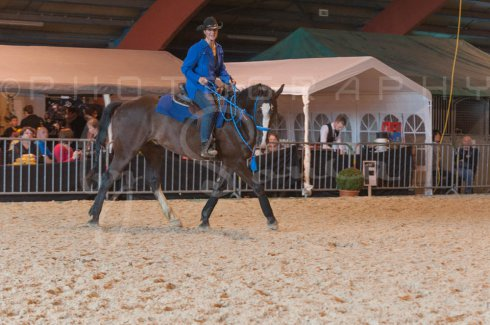 salon-du-cheval--hannut-995_25649994133_o
