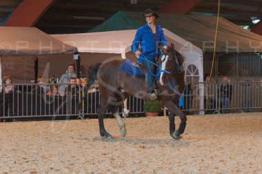 salon-du-cheval--hannut-998_25979817680_o