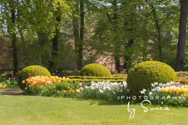 floralia-brussels-20_26172530033_o