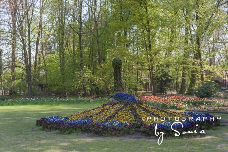 floralia-brussels-28_26172528193_o
